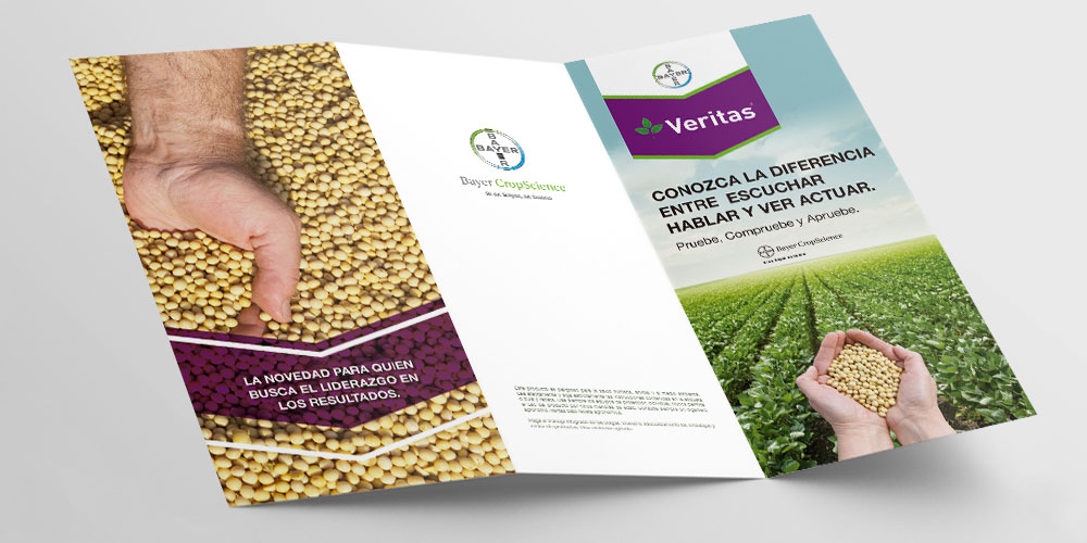 Bayer – Folder Veritas