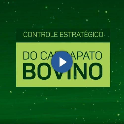 Instituto Biológico – Controle Carrapatos Bovinos
